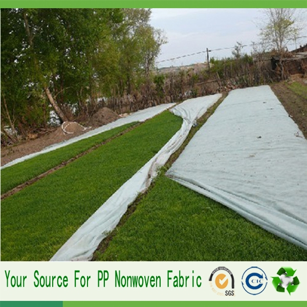 spunbond pp fabric non woven fabric Weed Membrane